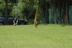 Giughem2011-32