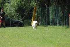 Giughem2011-37