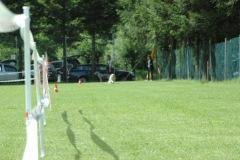 Giughem2011-7